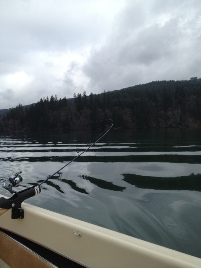 Trolling for Kokanee
